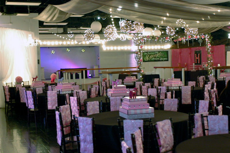 quinceanera celebration - banquet hall - 7151