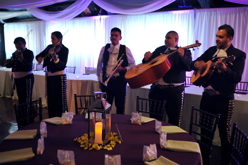 quinceanera celebration - banquet hall - 7171