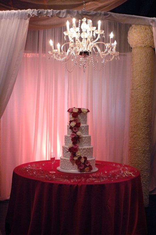 quinceanera celebration - banquet hall - 7224